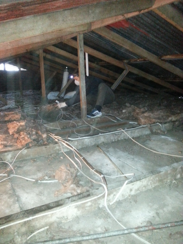 The rain pounding on the metal roof above and the howling wind made it abundantly clear just how much this house needed insulation.