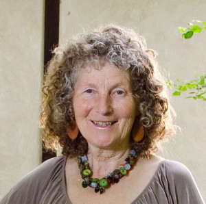 Polly Bart established Greenbuilders, Inc. to change the industry and help cosumers realise their dreams of beautiful, unique affordable green homes.