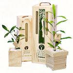 Eco Christmas Gift Ideas thumbnail