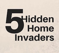 5 Hidden Home Invaders 200