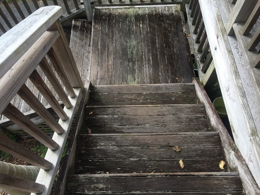 Now is a great time to tidy up those steps.